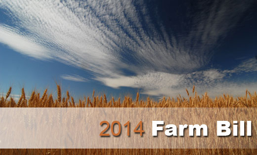 Farm Bill Homepage Feature