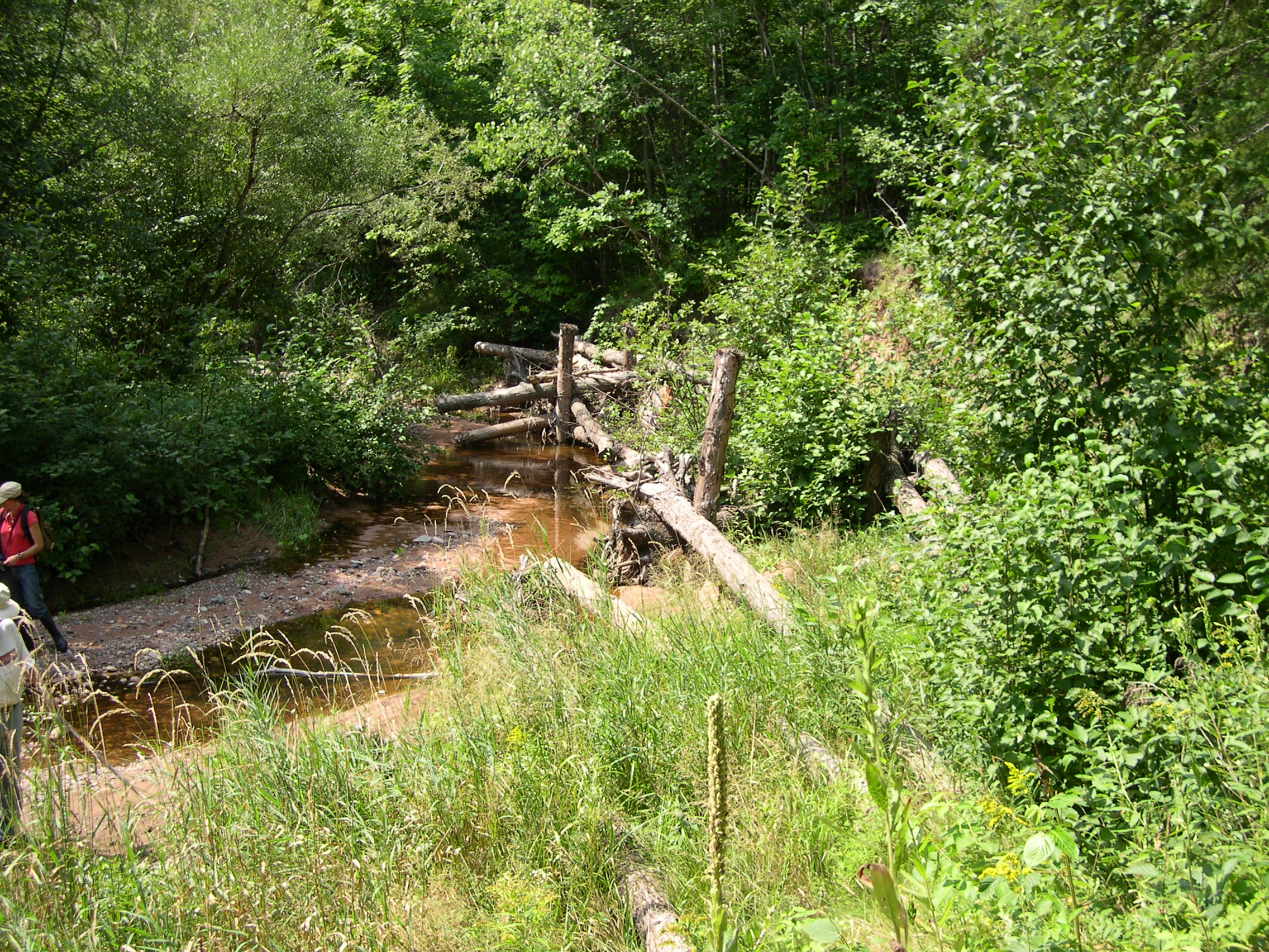 Results of stream restoration in the Lake Superior watershed.