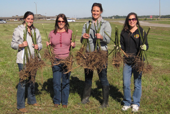 : Picture of Sophie Kilchrist, Juanita Clements, Patra Ghergich and Kim Walden holding river cane