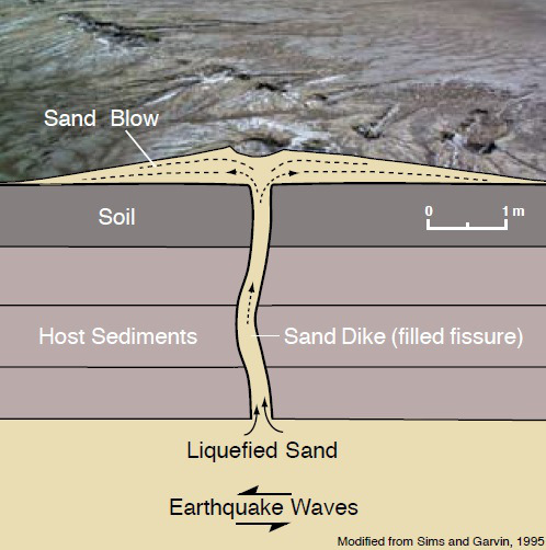 Illustration of a cross section of a modern sand dike superimposed on a photograph of actual sand blows (Simms, J.D., and Garvin, C.D., 1995).