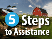 5 Steps to Assistance