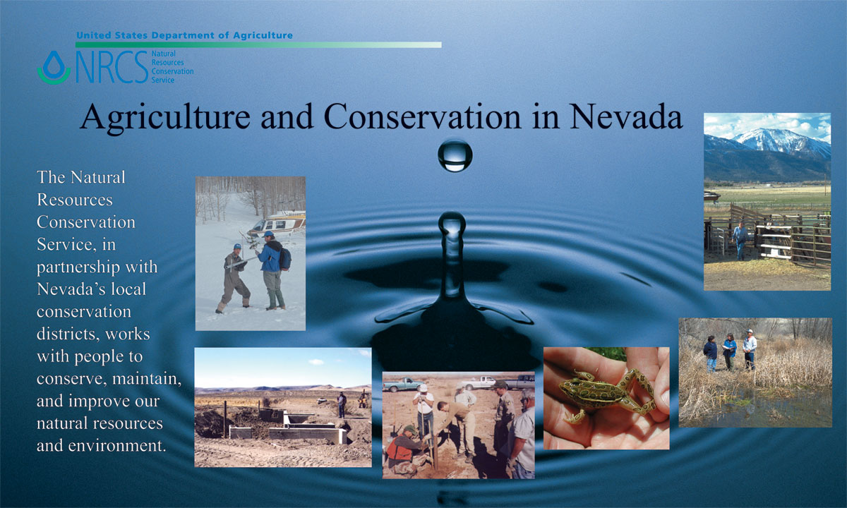 Ag Conservation In Nevada