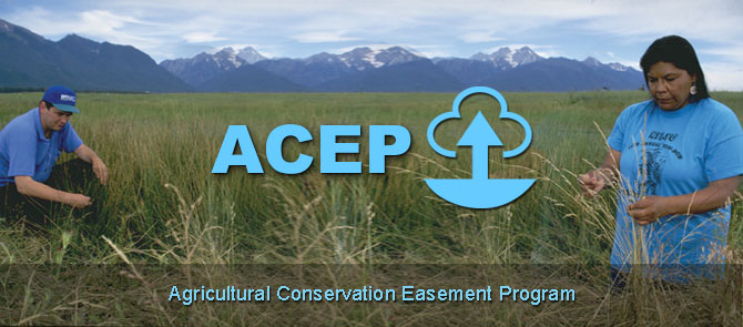 ACEP Banner - Man and woman in a field with mountains in the background