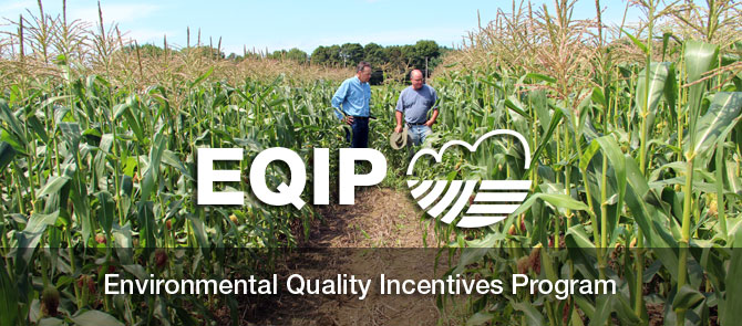 EQIP Environmental Quality Incentives Program