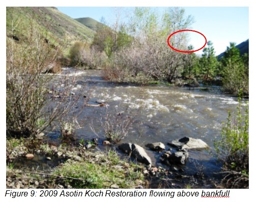 Asotin Koch Restoration flowing above bankfull