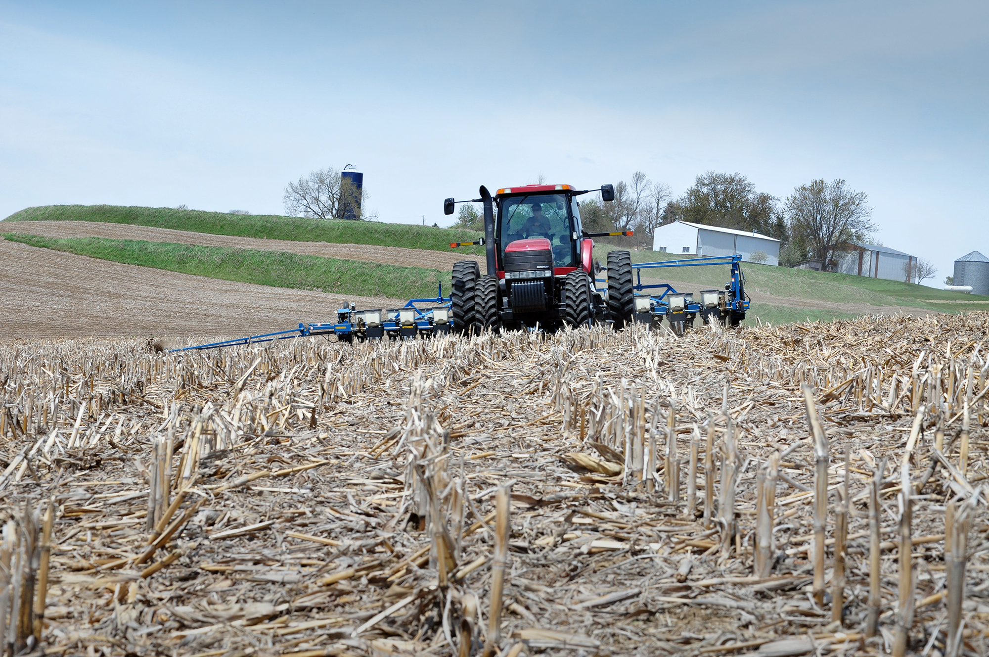 Conservation tillage practices like no-till allow farmers to plant cash crop seeds with little distu