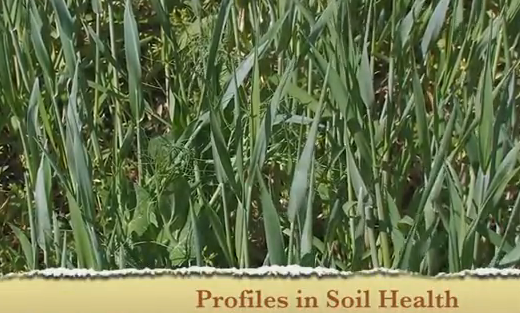 Profiles in Soil Health