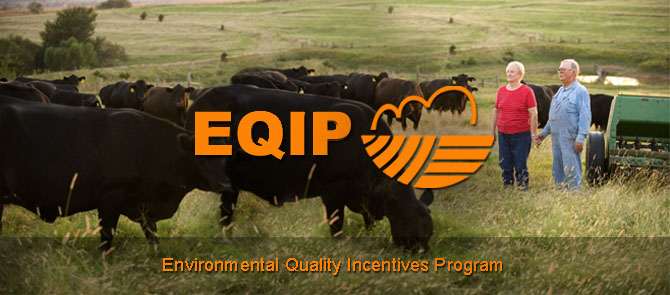 EQIP logo and picture