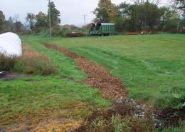 A vegetated treatment area for silage leachate