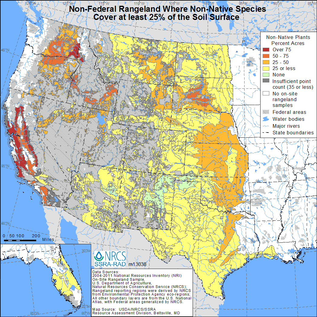 2014 non native plant species nrcs map showing non federal rangeland where non native species make up at least 50 publicscrutiny Image collections