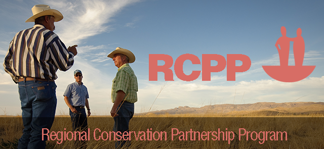 RCPP Initiative banner