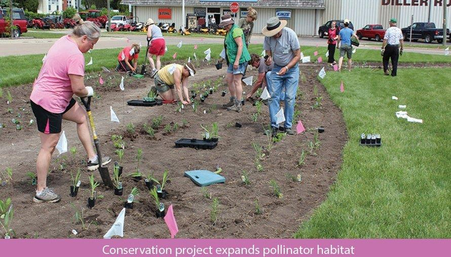 Conservation project expands pollinator habitat