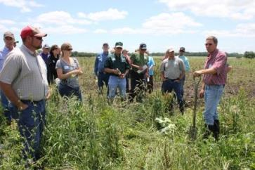 Field tour of cover crop grazing system