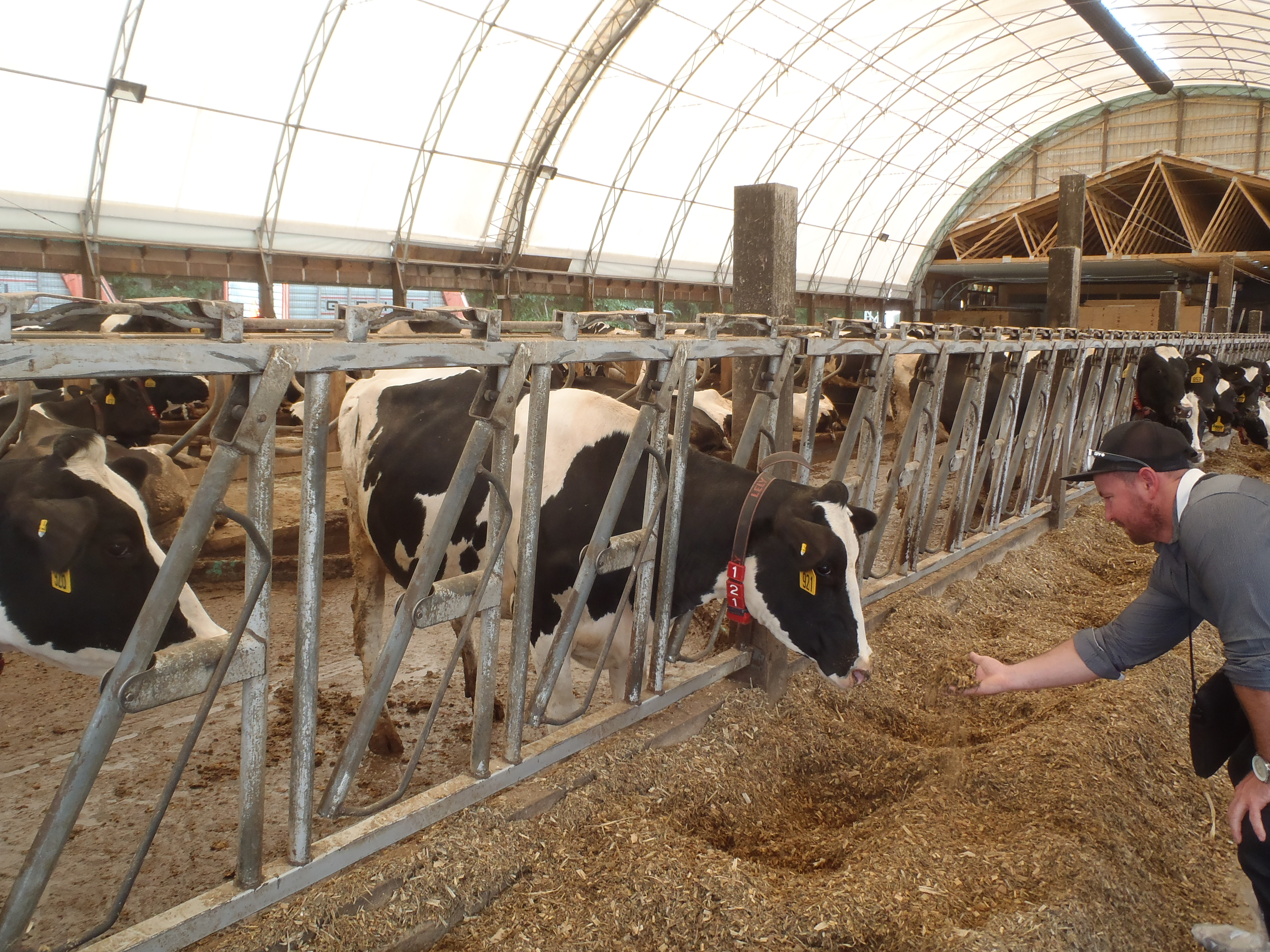 NRCS New York Hosts Tour For Nuffield Farming Scholars