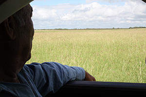 Arnold Trejo admires the mixed grasses that are flourishing in his fields that once were bare.