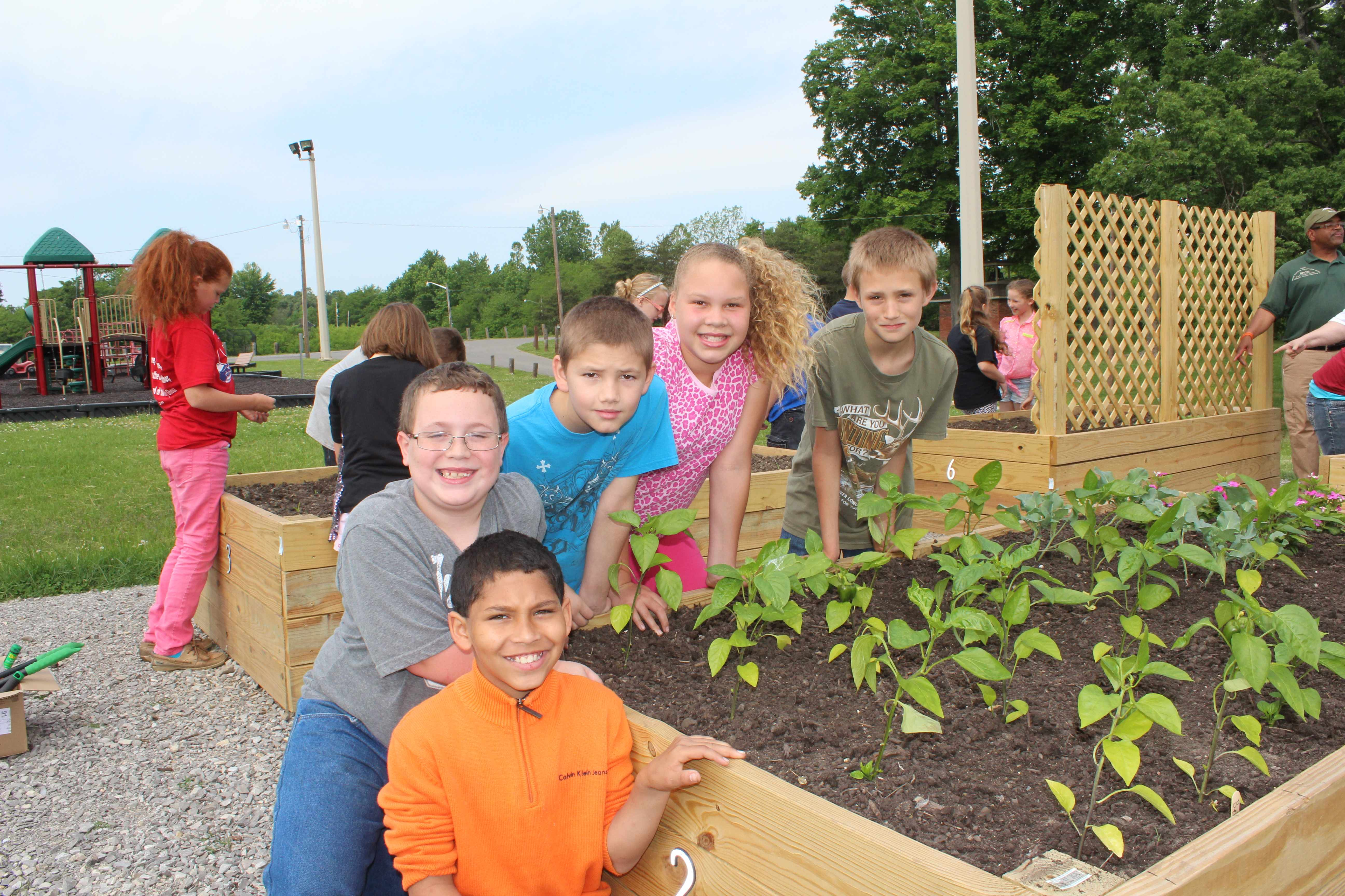 Raised Gardens Project In Webster County Kentucky Brings