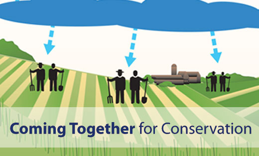 Coming Together for Conservation