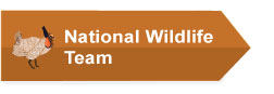 National Wildlife Team