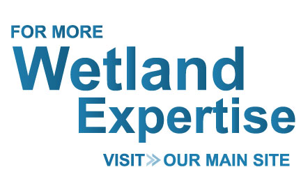 For more Wetland Expertise, Visit our Main Site