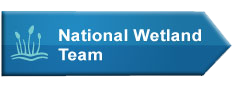 National Wetland Team