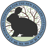 New England Cottontail logo
