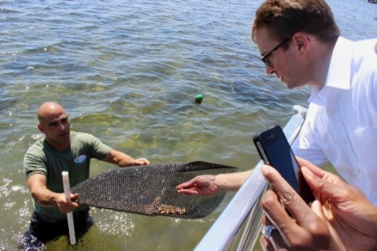 NRCS Chief Jason Weller examines locally grown oysters during an NACD tour in Rhode Island