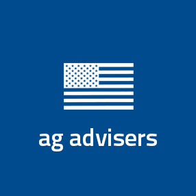 Lowercase ad advisers