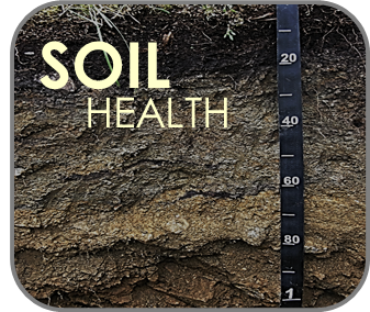 Soil health image