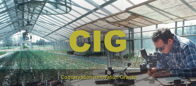 Conservation Innovation Grants (CIG) header