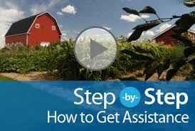 Step by Step Assistance