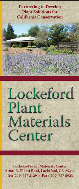 Image of the cover of the Lockeford PMC brochure