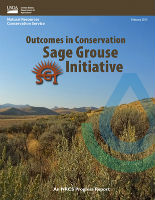 sage grouse initiative cover thumbnail