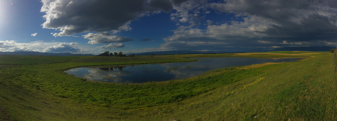 Panoramic view of a wetland on the Grosswiler's conservation easement. Photo by William Janoch.