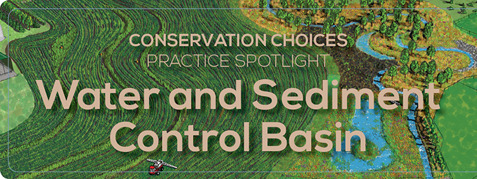 Water and Sediment Control Basin