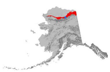 Soil Climate Site - Atigun Pass, Alaska | NRCS Alaska