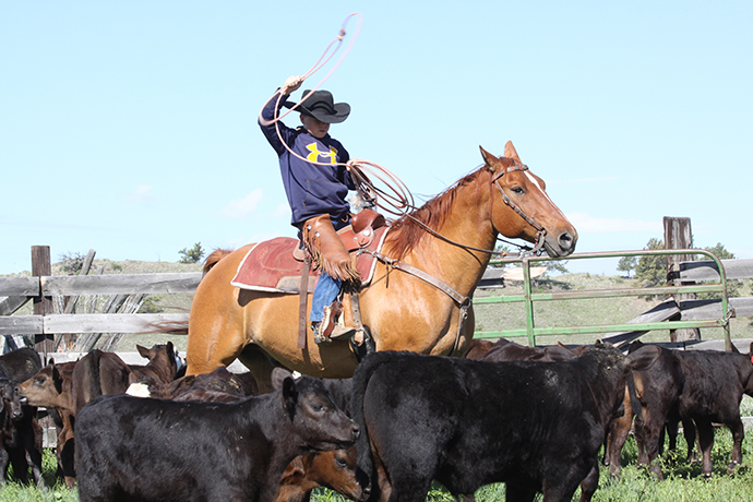 Boy roping calve from horse.