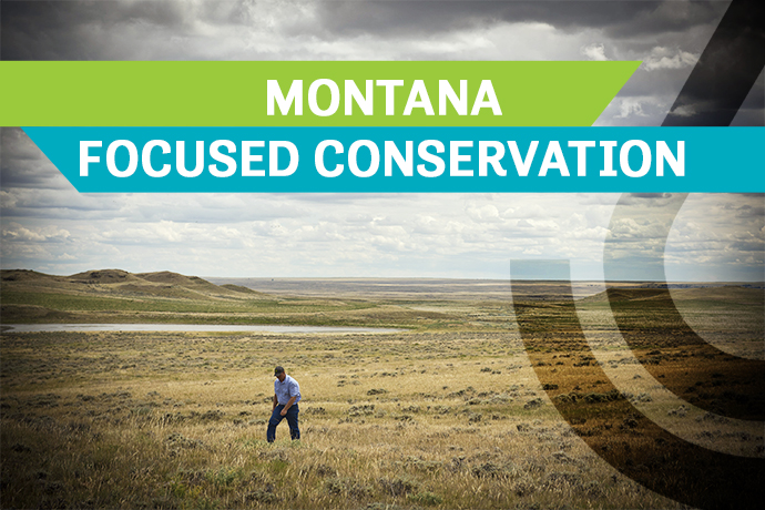 Montana Focused Conservation rangeland.