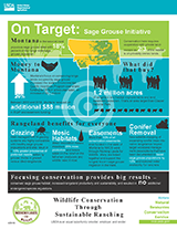 Thumbnail of the Sage Grouse Initiative On Target Info Graphic