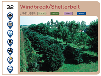 Windbreak/Shelterbelt
