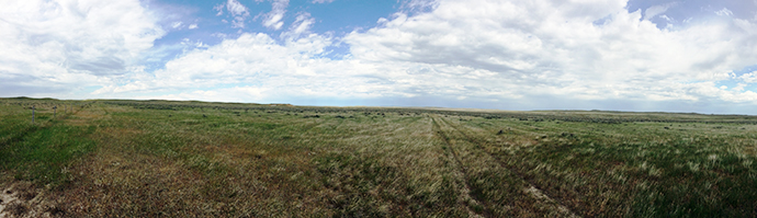 Wide angle view of grasslands on the North Sunday Creek Conservation Easement.